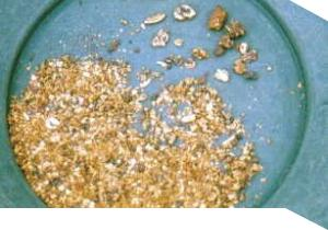Gold in a gold sifting pan
