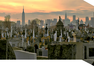 A view of Calvary Cemetery in Queens