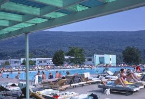 Vacationers sunbathe at Homowak pool, with the Catskill Mountains in the background.