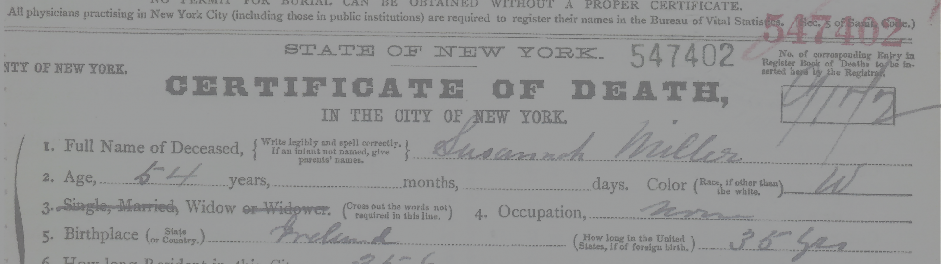 Nyc Vital Records Access New York Genealogical Biographical Society